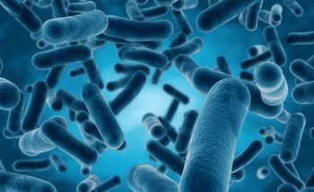 Antimicrobial-Scrubs
